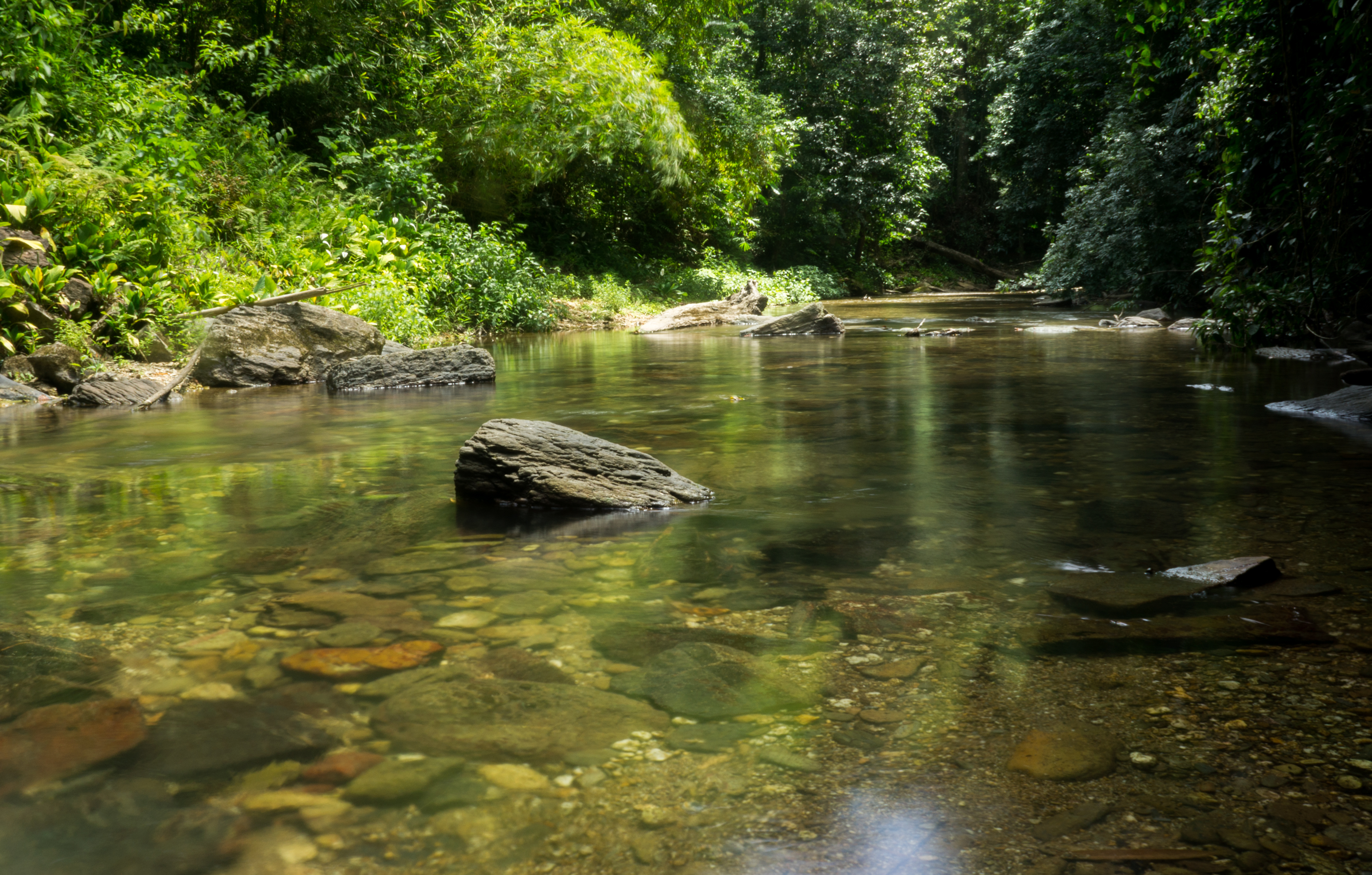 Watercourse leading to 3 pools in Blanchisseuse
